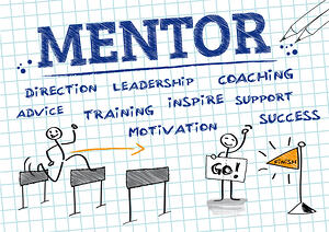 roles of a mindful safety mentor