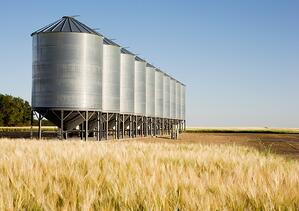 Safety Tips for Grain Handling