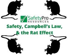 safety_Campbells_Law_and_the_rat_effect.jpg